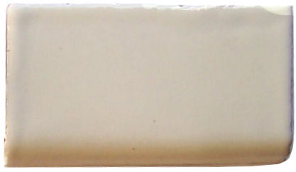 Mexican white Bullnose 4
